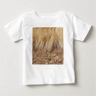 iDetail of a teff field during harvest Baby T-Shirt