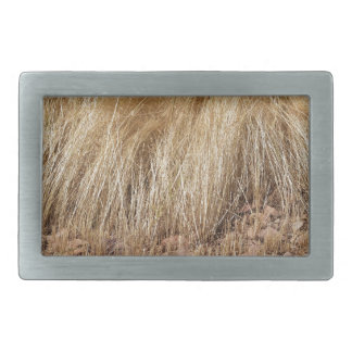 iDetail of a teff field during harvest Belt Buckles