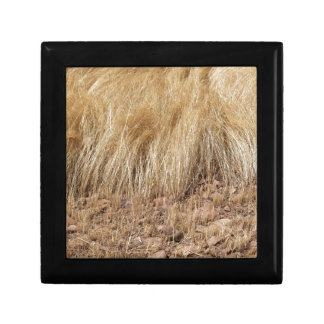 iDetail of a teff field during harvest Gift Box