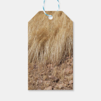 iDetail of a teff field during harvest Gift Tags