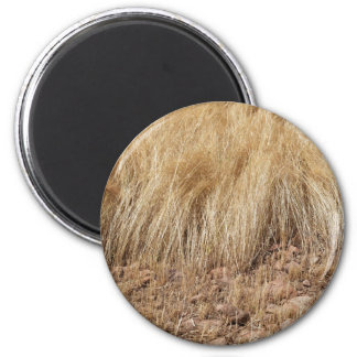 iDetail of a teff field during harvest Magnet