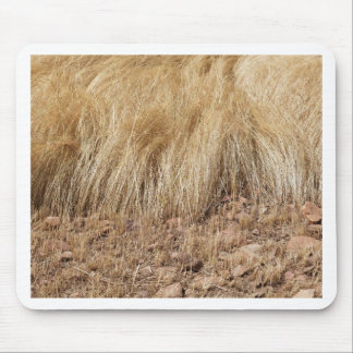 iDetail of a teff field during harvest Mouse Pad