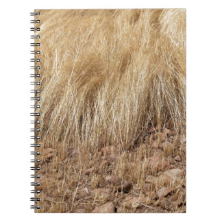 iDetail of a teff field during harvest Notebook
