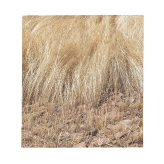 iDetail of a teff field during harvest Notepad