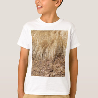iDetail of a teff field during harvest T-Shirt