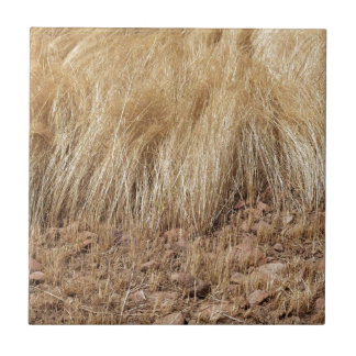 iDetail of a teff field during harvest Tile