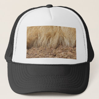 iDetail of a teff field during harvest Trucker Hat