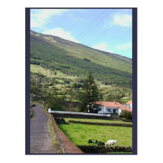 Idyllic Home / Scenic Landscape Photo Postcard
