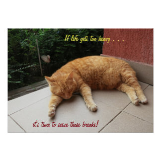 If life gets too heavy Cat (2) Poster