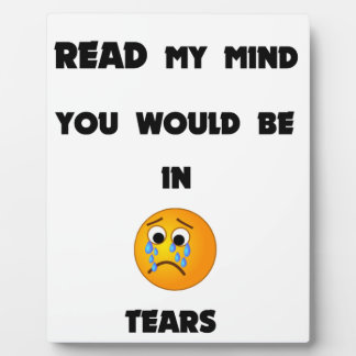 if you could read my mind you would be in tears2.p plaque