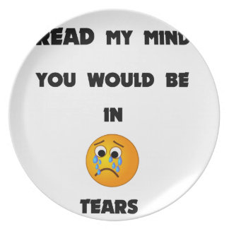 if you could read my mind you would be in tears2.p plate