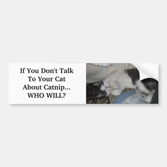 If You Don't Talk To Your Cat Abo... Bumper Sticker