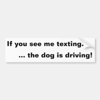 If you see me texting ... the dog is driving! bumper sticker