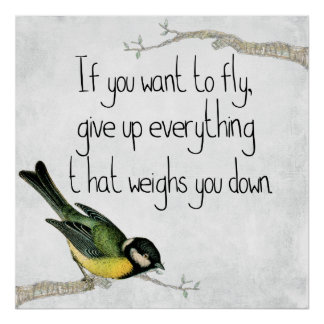 If You Want to Fly Motivational Poster