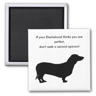 If your dachshund thinks you are perfect don't magnet