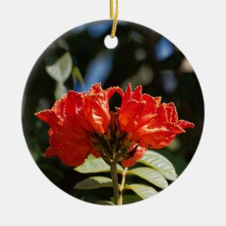 iFlowers of an African tuliptree Ceramic Ornament