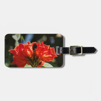 iFlowers of an African tuliptree Luggage Tag