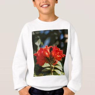 iFlowers of an African tuliptree Sweatshirt