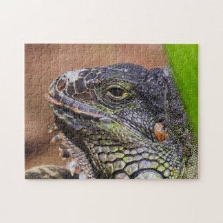Iguana 01 Digital Art - Photo Puzzle
