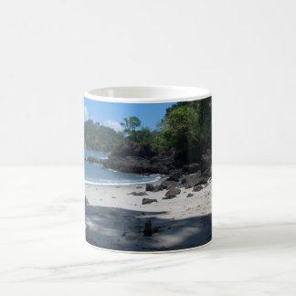 Iguana Beach Coffee Mug