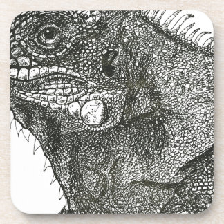 Iguana Coaster