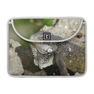 "Iguana, Curacao, Caribbean islands, Photo 13"" Sleeve For MacBooks"