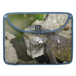 "Iguana, Curacao, Caribbean islands, Photo 15"" Sleeve For MacBooks"