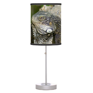 Iguana, Curacao, Caribbean islands, Photo Table Lamp