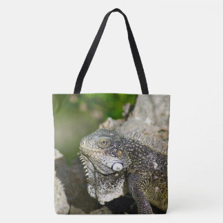 Iguana, Curacao, Caribbean islands, Photo Tote Bag