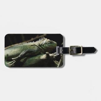 Iguana delicatissima luggage tag