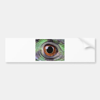 Iguana eye bumper sticker