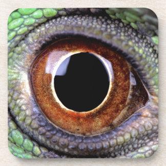 Iguana eye coaster