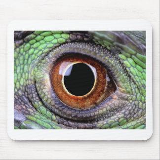 Iguana eye mouse pad