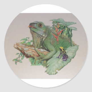 Iguana/Frog looking on Classic Round Sticker