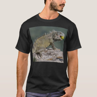 Iguana fruit thief T-Shirt