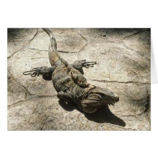 Iguana , Giant Lizard in Mexico Card