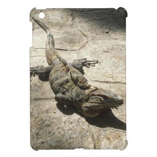 Iguana , Giant Lizard in Mexico iPad Mini Cover