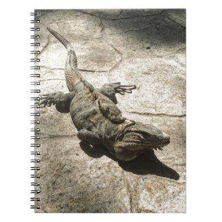 Iguana , Giant Lizard in Mexico Notebook