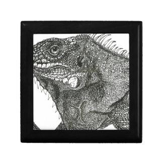 Iguana Gift Box