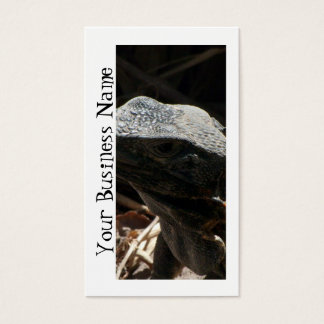 Iguana in the Shadows Business Card