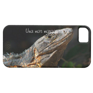 Iguana in the Sun; Mexico Souvenir iPhone 5 Cover
