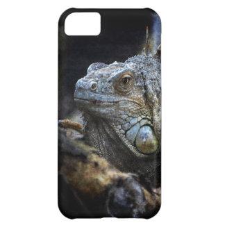 Iguana Lizard Reptile Phone Case