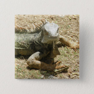 Iguana Lizard Square Pin