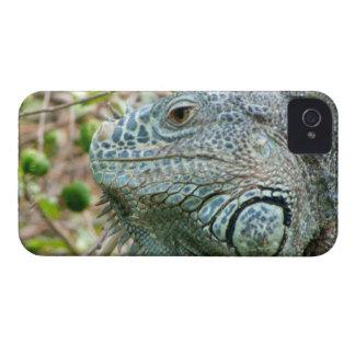 Iguana Profile iPhone 4 Case