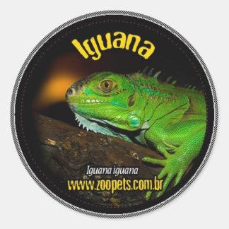 iguana round sticker