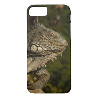 Iguana see you 2 iPhone 7 case