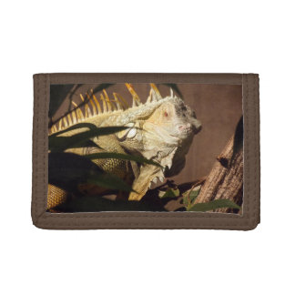 Iguana Tri-fold Wallet