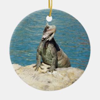 Iguana Tropical Wildlife Ceramic Ornament