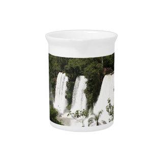 Iguazu Falls, Argentina, South America Pitcher