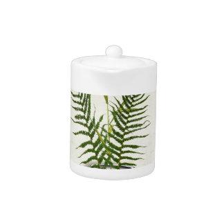 ikebana 14 by tony fernandes
